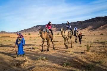 zagora camel ride